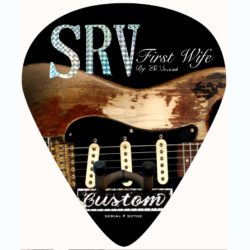 SRV Number One Stratocaster Strat guitar pick wall hanger 2